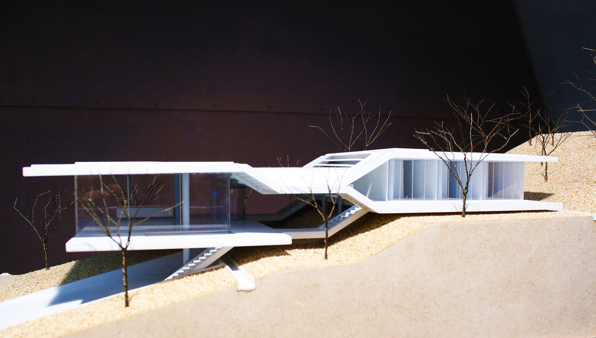 Brazilian House #1